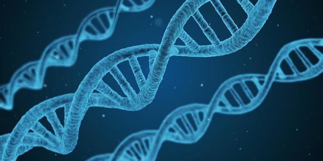 TESTE DE PATERNIDADE (DNA)
